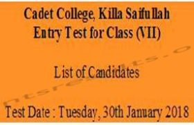 Cadet College Killa Saifullah Entry Test Roll no Slip