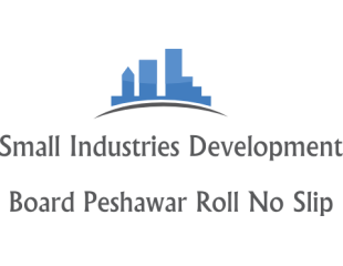 Small Industries Development NTS Interview Selected Candidates List