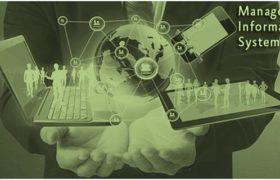 Management Information System NTS Job
