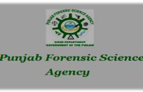 Punjab Forensic Science Agency NTS Job Roll Number Slip