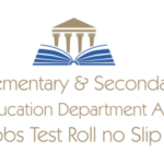 Elementary Secondary Education Department Azad Jammu Kashmir Jobs Test Roll no Slip