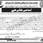 Shaheed Mohtarma Benazir Bhutto Trauma Center Civil Hospital Karachi Jobs