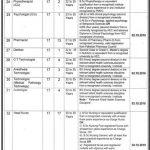 Teaching Hospital DHQ DG Khan Jobs