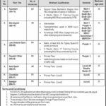 Pakistan Halal Authority PHA Jobs Via CTS