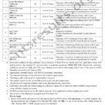 Syed Abdullah Shah Institute of Medical Sciences SASIMS Sehwan Sharif Jobs Via NTS