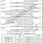 Elementary Secondary Education Department ESE KPK Jobs NTS Test Answer Keys Result