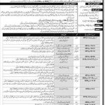 Pakistan Army Defence Security Force DSF Jobs November 2019