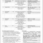 SLIC State Life Insurance Jobs 2019 Via PTS Total 599 Posts
