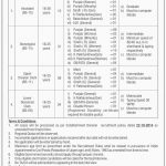 Ministry Of Planning Development and Reform Jobs OTS Test Result