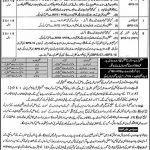 Elementary and Secondary Education Department KPK District Cadre Jobs NTS Test Answer Keys Result