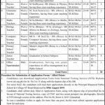 Khanewal Public School College Kabirwala Public School Jobs NTS Test Roll No Slip