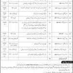 National Archives of Pakistan Jobs CTSP Test Result