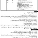 Tribal Areas Electric Supply Company TESCO Jobs ALM NTS Test Answer Keys Result Physical Test