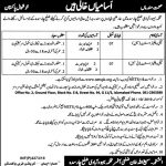 Population Welfare Department KPK Charsadda Jobs Via NETSPK