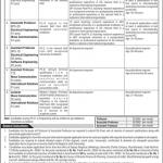 University Of Azad Jammu Kashmir Muzaffarabad AJKU Jobs