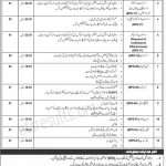 Ministry of Human Rights MOHR Jobs NTS Test Roll No Slip