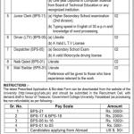 GCUF Govt College University Faisalabad Jobs Hafizabad Chiniot Campus