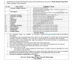 Govt Sadiq College Women University Bahawalpur GSCWU Jobs
