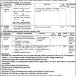 King Edward Medical University KEMU Lahore Mayo Hospital Jobs