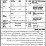 Ministry of Interior Jobs PTS Test Roll No Slip