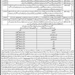 Elementary Secondary Education Department Jobs FTS Test Answer Keys Result