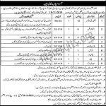 Quaid e azam Library Bagh E Jinnah Lahore Jobs 13 Vacancies 2019