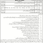 Board of Intermediate and Secondary Education Saidu Sharif Swat BISESS Jobs NTS Test Roll No Slip