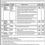 Ministry Of Federal Education Professional Training Jobs OTS Roll No Slip MOFEPT
