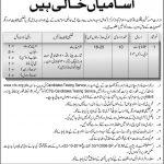 Ministry Of Kashmir Affairs GB Jobs CTS Roll No Slip MoKGB