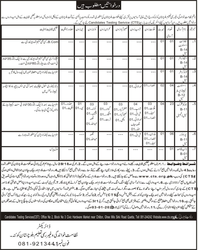 Directorate of Litracy Non formal Education Jobs CTS Sample Papers Syllabus