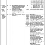 Population Welfare Department Gilgit Baltistan Jobs CTSP Roll No Slip