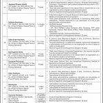 Overseas Pakistanis Foundation OPF Jobs CTS Roll No Slip
