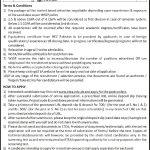 Water Sanitation Services Peshawar WSSP Jobs ETEA Roll No Slip