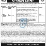 District Director Agriculture Department DI KHAN Jobs ATS Roll No Slip