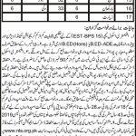 Balochistan Education Department EST Jobs NTS Roll No Slip Elementary School Teacher