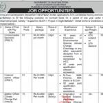 Gilgit Baltistan Planning Development Department Secretariat Jobs ETEA Result Answer Keys