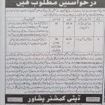 DCO Deputy Commissioner Peshawar Jobs NTS Test Roll No Slip