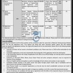 Deputy Commissioner Office Battagram Jobs NTS Answer Keys Result