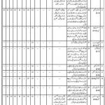 Directorate of Manpower Training Balochistan Jobs CTS Test Result