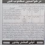 DCO Deputy Commissioner Peshawar Jobs NTS Answer Keys Result