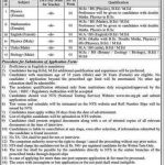 DPS TTS Divisional Public School College Toba Tek Singh Jobs NTS Result Answer Keys