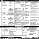 Municipal Officer Infrastructure Services Assistant Director PPSC Roll No Slip