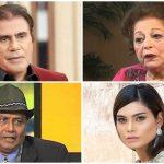 Pakistani Celebrities Show Biz Stars Who Died In 2020