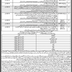Education Department ESED AT TT CT IT QARI Jobs ETEA Result provisional merit list