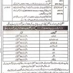 Elementary Secondary Education Department KPK SST Jobs NTS Result Answer Keys Merit ListSST Posts (BPS-16)