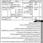 Livestock and Dairy Development Department KPK Jobs Peshawar 2021