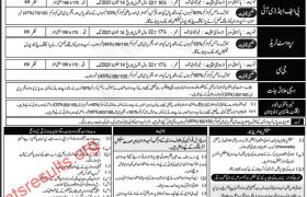 Pakistan Air Force PAF Aero Trades JC PFDI Provost Jobs