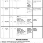 Women Development Department Sindh Jobs Via SIBA Testing Service