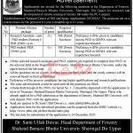 Shaheed Benazir Bhutto University Sheringal Dir Upper Jobs ATS Result