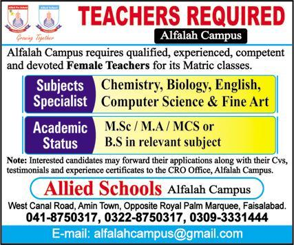 Allied School Alfalah Campus Faisalabad Jobs